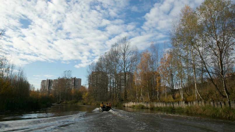 Фото: globallookpress.com/ Sergey Chernov