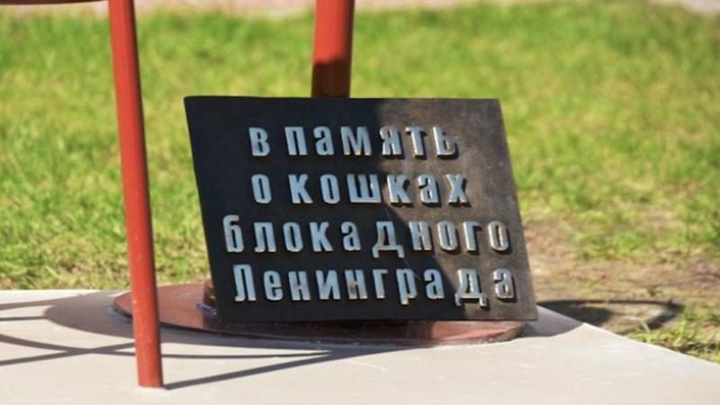 Фото: vk.com/pravo_na_zhizn