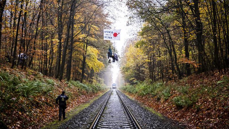 Фото: пресс-служба Greenpeace России